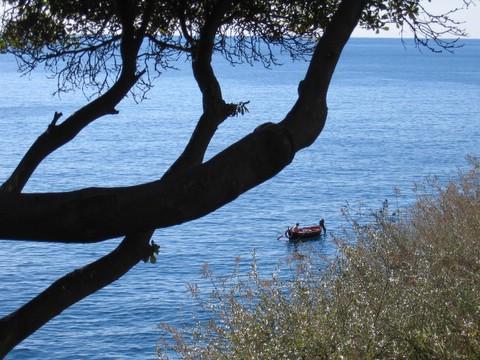 tra le fronde, pescatore