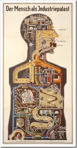 L'uomo come palazzo industriale