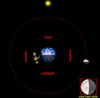 Le fasi lunari animate