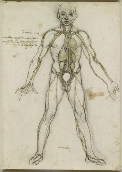 Disegni di Leonardo ad alta definizione
