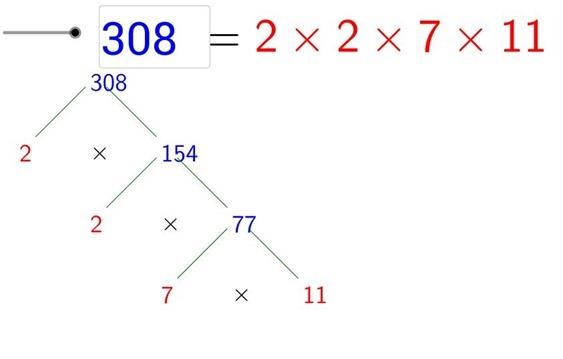 Visualizza la fattorizzazione in numeri primi